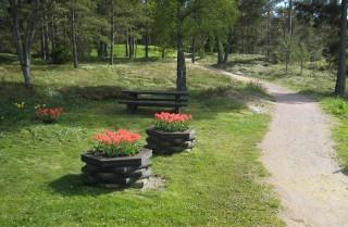Tulpanplantering på väg mot ettans tee på Västra.
