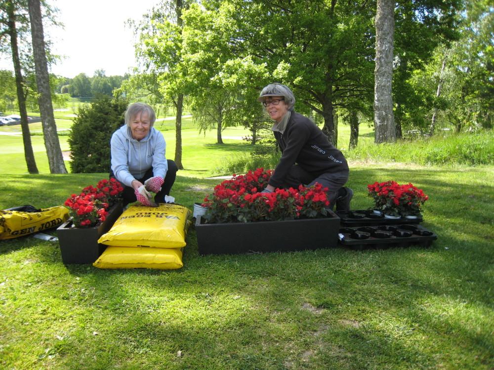 Terttu Matsson och Anita Andersson planterar