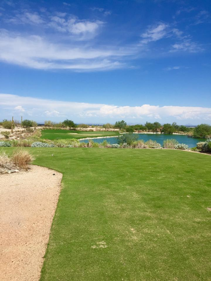 Golfbana_Arizona